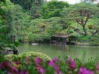 Pond at Rikugien Park