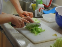 tsukemono-workshop-tokyo-cabbage