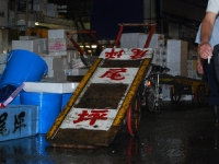 tsikiji-fish-market-cart.jpg