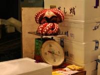tsukiji-fish-market-tokyo-japan-tuna-auction8.jpg