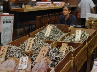 tsukiji-morning-market5.jpg