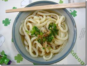 Sanuki Udon Japanese Food
