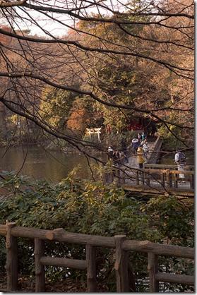 Inokashira Pond Tokyo Japan