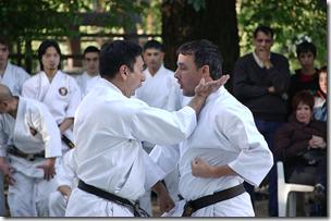 karate Budo Japanese Martial Arts