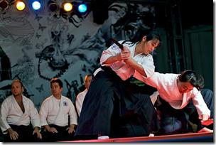 Aikido Budo Japanese Martial Arts