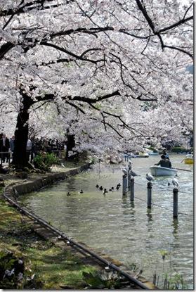 Shinobazu Pond Ueno