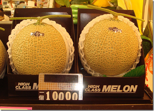 japan melon gift pack