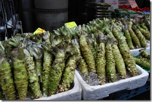 Tsukiji Morning Market Wasabi